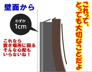 Panasonicfig_02.jpg