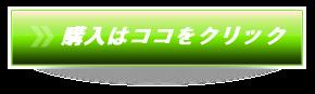 ママイオン ION-P1000購入